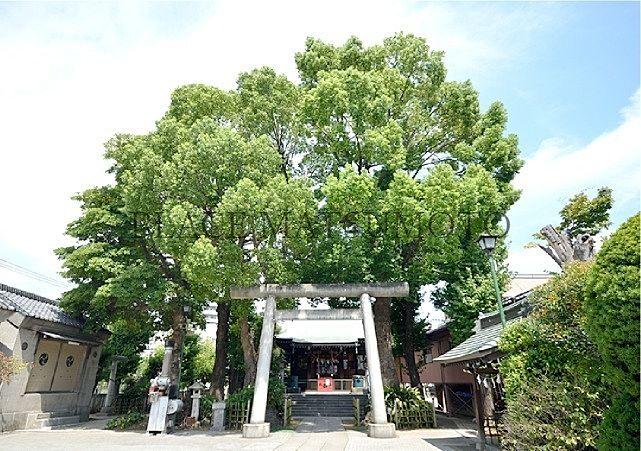 小村井香取神社 徒歩4分(約260m)